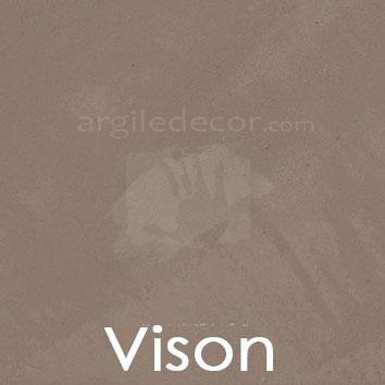 Vison